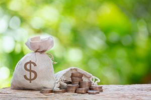 Seven different types of loan
